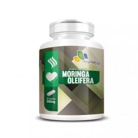 Moringa Oleifera 60 Cápsulas 500mg - Flora Nativa