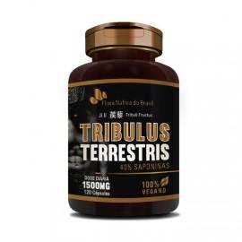Tribulus Terrestris - Flora Nativa